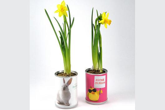 Mac Flowers Frohe Ostern aus der Dose, gesehen bei spuersinn24.com