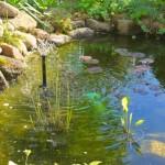 Pumpensteuerung für den Gartenteich